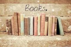 blog littéraire, blogueuses, polar sur loire